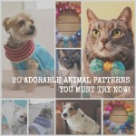 how-to-knit-a-dog-sweater