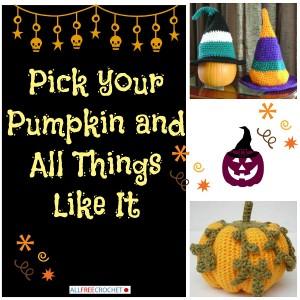 Pick Your Pumpkin: Crochet Pumpkins and More