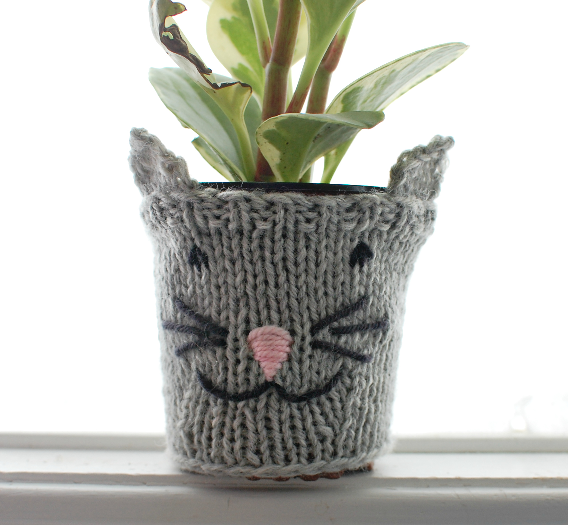 Cat Pot Cozy