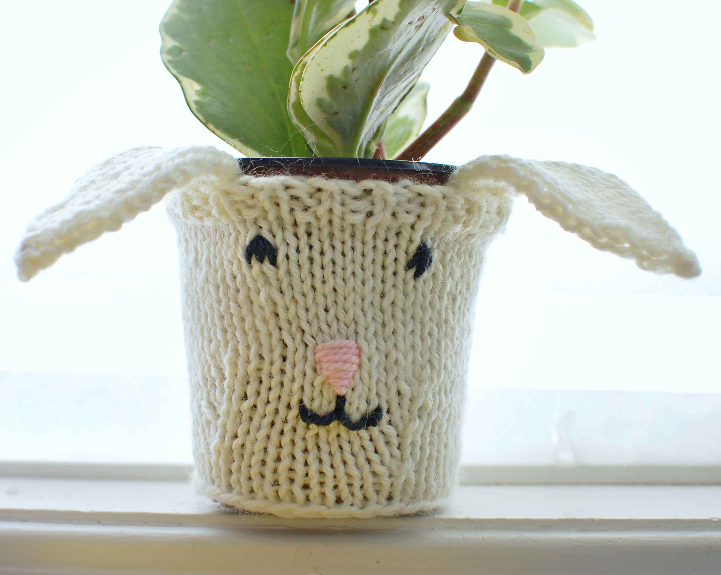 Bunny Pot Cozy